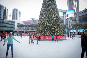 Skaters on the ice